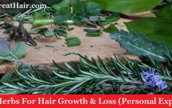 17 Best Herbs For Hair Growth & Loss (Personal Experience)