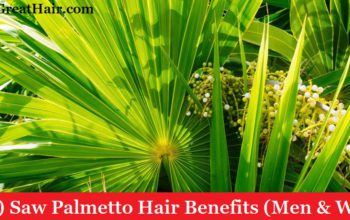 (Top 7) Saw Palmetto Hair Benefits (Men & Women)