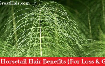 (Top 7) Horsetail Hair Benefits (For Loss & Growth)